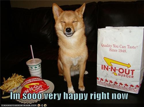 burger,drink,fries,happy dog,in-n-out,noms,people food,shib inu,treat