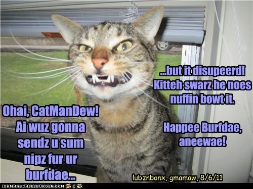 Ohai, CatManDew! Ai wuz gonna sendz u sum nipz fur ur burfdae... ...but it disupeerd! Kitteh swarz he noes nuffin bowt it. Happee Burfdae, aneewae! lubznbonx, gmamaw, 8/6/11