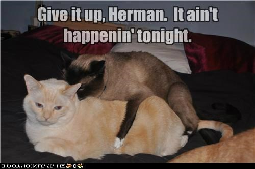 Give it up, Herman. It ain't happenin' tonight.