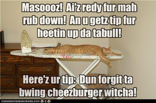 Cheezburger Image 5058393856