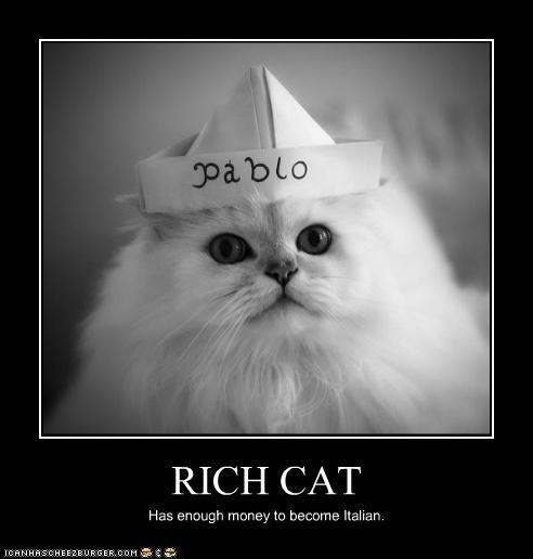 RICH CAT Has enough money to become Italian.