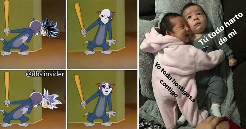 memes en lista abultada