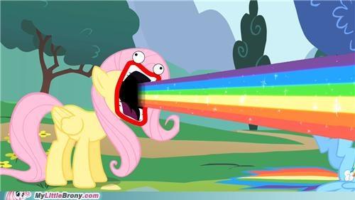 fluttershy louder ponies rainbow shout - 5061149952