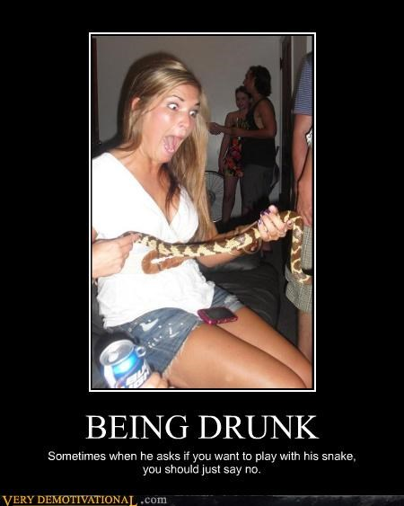 bad idea drunk hilarious scary snake - 5063053312