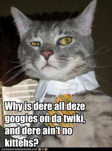 Why is dere all deze googies on da twiki, and dere ain't no kittehs?