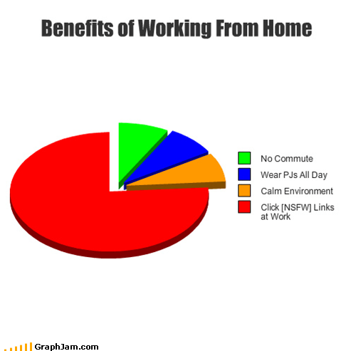 commute,home,NSFW,Pie Chart,pjs,wfh,work