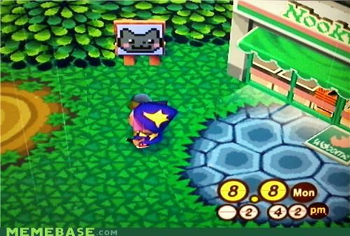 animal crossing Nyan Cat sign video games