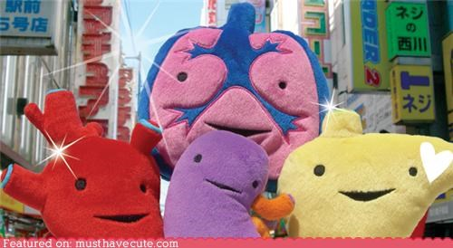 fleece organs Plush soft toys - 5064955904