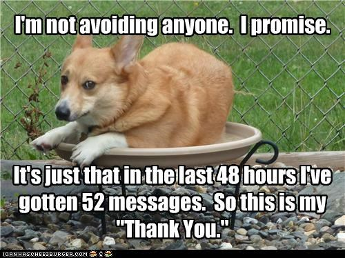 """I'm not avoiding anyone. I promise. It's just that in the last 48 hours I've gotten 52 messages. So this is my """"Thank You."""""""