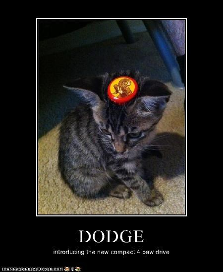 Cheezburger Image 5065056256