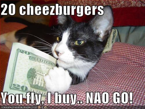 Cheezburger Image 5065502464