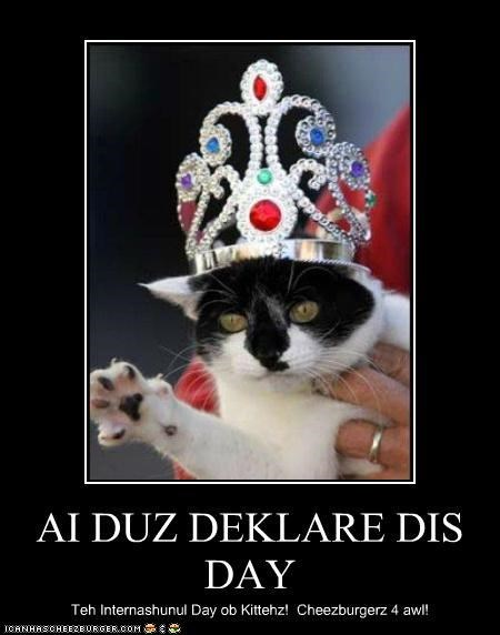 best of the week,celebration,Hall of Fame,holidays,international,international cat day,package post,world,world domination