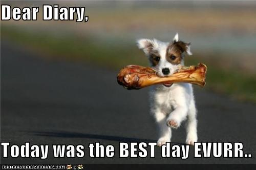 Dear Diary, Today was the BEST day EVURR..