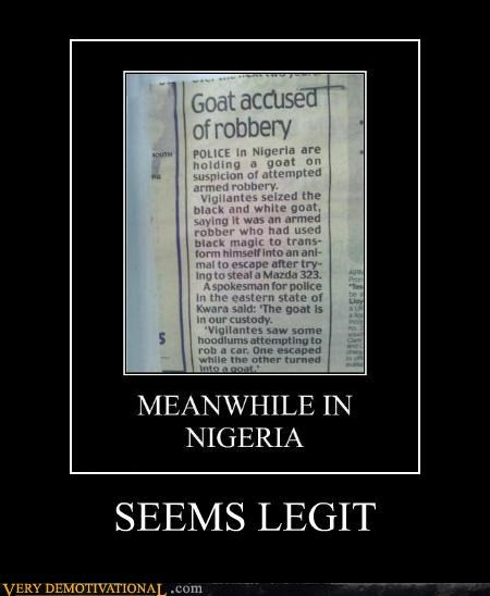 accused,goats,hilarious,nigeria,robbery