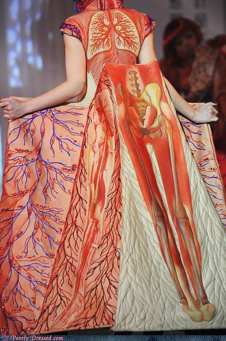 dress,fashion show,organs,skeleton,veins,xray