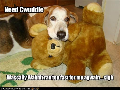 Need Cwuddle Wascally Wabbit ran too fast for me agwain....sigh