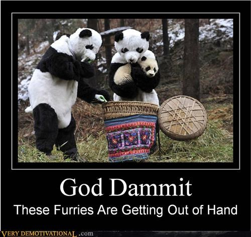 basket hilarious out of hand panda wtf - 5067636736