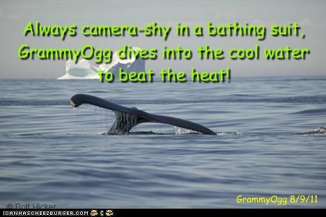 Always camera-shy in a bathing suit, GrammyOgg dives into the cool water to beat the heat! GrammyOgg 8/9/11