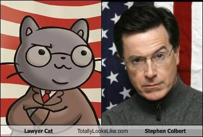cartoons,comedians,comedy,glasses,lawyer cat,stephen colbert
