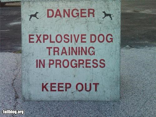 dogs failboat g rated oddly specific signs - 5069522432