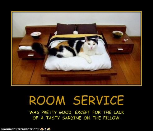 ROOM SERVICE WAS PRETTY GOOD, EXCEPT FOR THE LACK OF A TASTY SARDINE ON THE PILLOW.