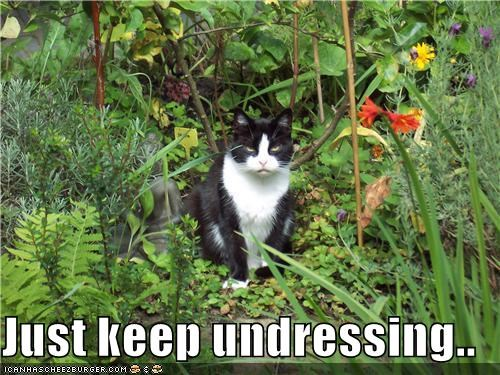 Just keep undressing..