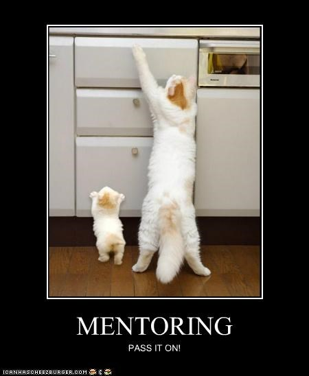 caption,captioned,cat,Cats,instructing,kitten,mentoring,on,pass,pass it on,reaching,teaching