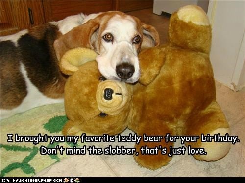 I brought you my favorite teddy bear for your birthday. Don't mind the slobber, that's just love.