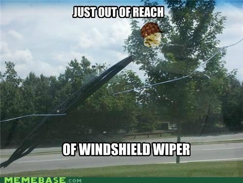 bird IRL Memes poop windshield wiper - 5073144576