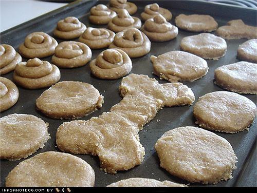 delicious dog treats food homemade homemade goggie treat ob teh week noms peanut butter snacks treats - 5073175808