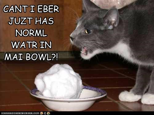 CANT I EBER JUZT HAS NORML WATR IN MAI BOWL?!