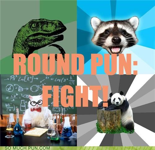 Bad Pickup Line Panda,battle royale,chemistry cat,contest,Lame Pun Coon,Memes,philosoraptor,poll