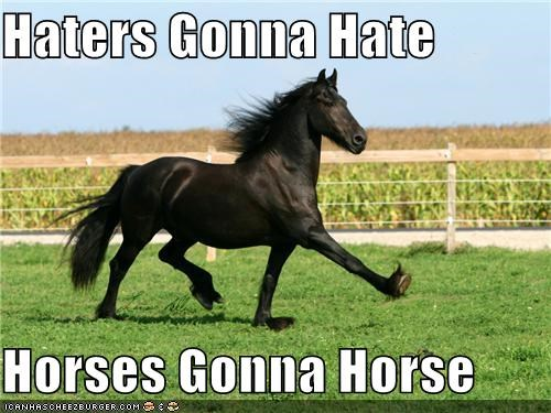 animals,haters,haters gonna hate,horses,I Can Has Cheezburger
