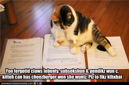 Cheezburger Image 5075422208