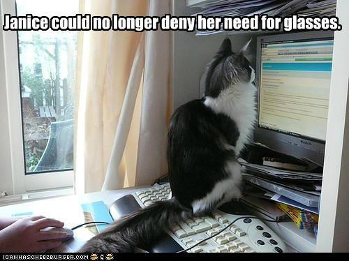 caption captioned cat closeup computer deny glasses longer need no screen Staring - 5075835392