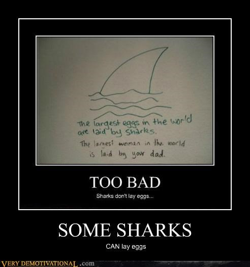 eggs hilarious lessons sharks wtf