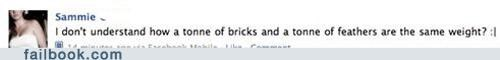 bricks facepalm really-feathers stupid ton - 5076210176
