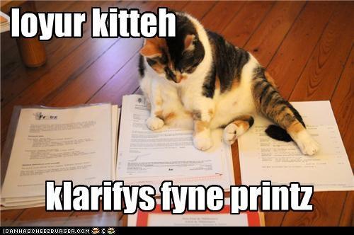 loyur kitteh klarifys fyne printz