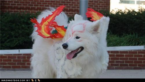 amaterasu,anime,cosplay,dante,dog cosplay,Ōkami,Otacon