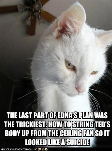 THE LAST PART OF EDNA'S PLAN WAS THE TRICKIEST: HOW TO STRING TED'S BODY UP FROM THE CEILING FAN SO IT LOOKED LIKE A SUICIDE