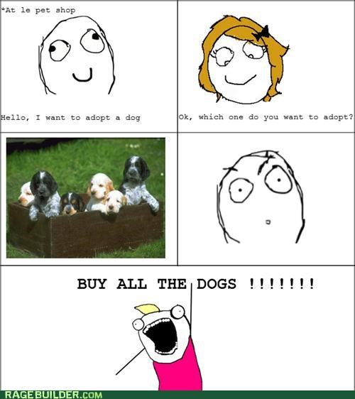 adopt all the guy all the things cute dogs Rage Comics - 5077391872