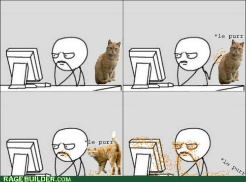 cat,fur,gross,Rage Comics