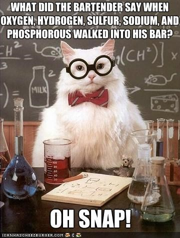 Chemistry,chemistry cat,elements,memecats,Memes,oh snap,periodic table of elements,puns,science