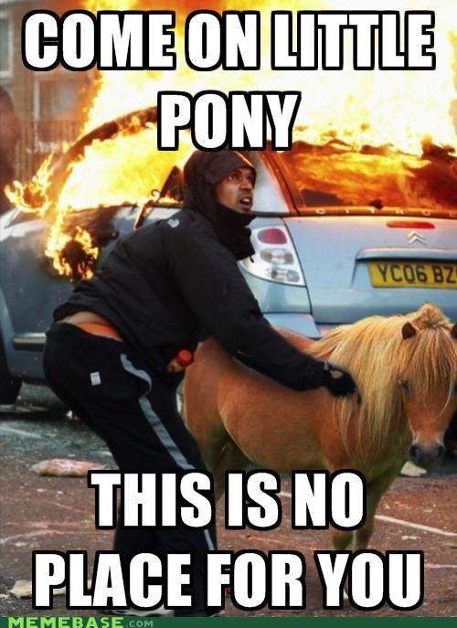 best of week Bronies fire my little pony riots - 5078174464