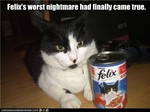 animals canned cannibalism cans cat food Cats felix food gross I Can Has Cheezburger - 5078867200