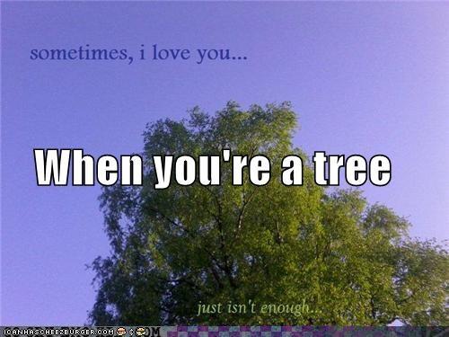 love,Sad,tree,weird kid,wtf