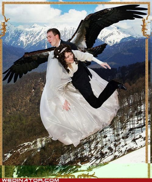 russia wings photoshop weird - 5078963456