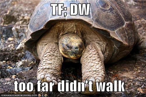 acronym caption captioned didnt far too turtle walk - 5078994944