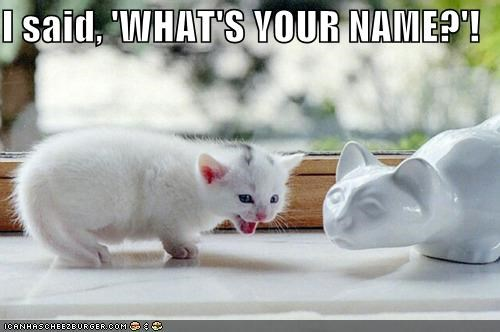 I said, 'WHAT'S YOUR NAME?'!