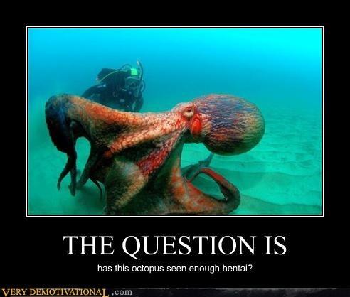 hilarious japanese entertainment octopus scuba diver - 5079515904